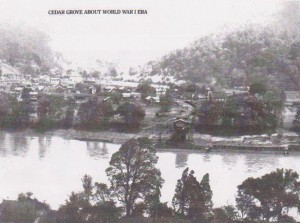 CGWWI